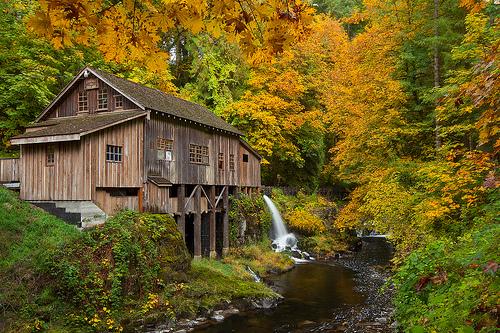 Pacific Northwest Autumn