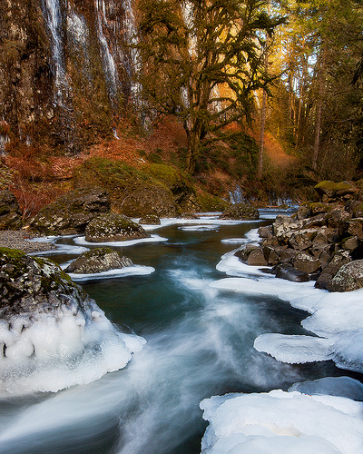 Abiqua Creek - Winter 2009