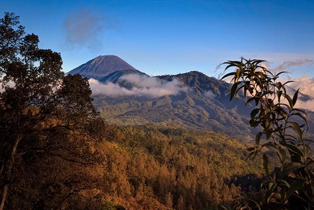 Mount Seneru - Photographing Mount Bromo