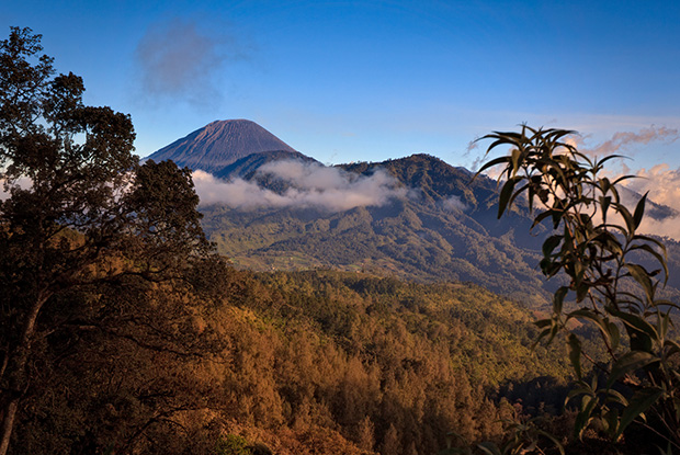 Mount Seneru - Photographing Mount Bromo