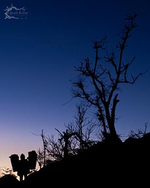 Bromo Porter - Photographing Mount Bromo
