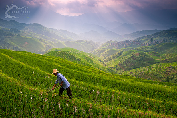 Longji Rice Terrace - Photographing Guilin China
