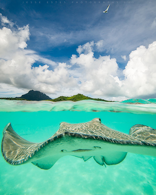 Tahiti & The French Polynesia, Split photography